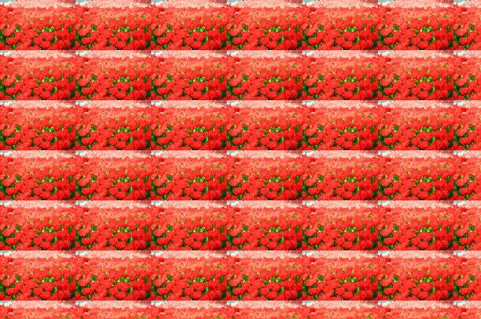 Vinylová Tapeta Červené tulipány - Květiny