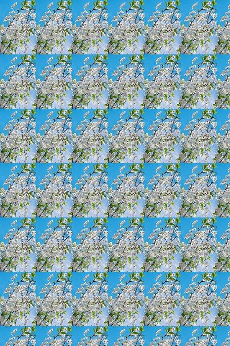Vinylová Tapeta Kvetoucí třešňové větvičky na jaře - Témata
