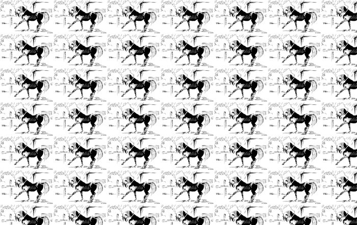 Horse spanish step - vector sketch Vinyl Wallpaper - International Celebrations