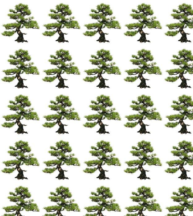 Vinylová Tapeta Bonsai Tree - Stromy