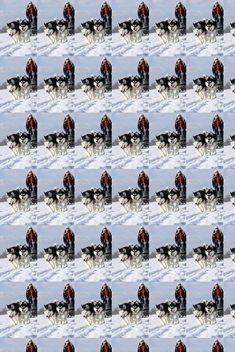 Vinylová Tapeta Zimní sporty psích spřežení - Savci