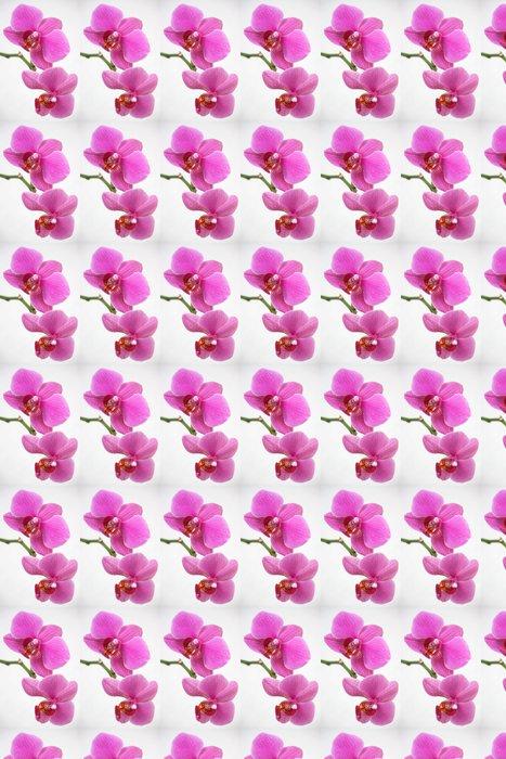 Vinylová Tapeta Růžová orchidej - Květiny
