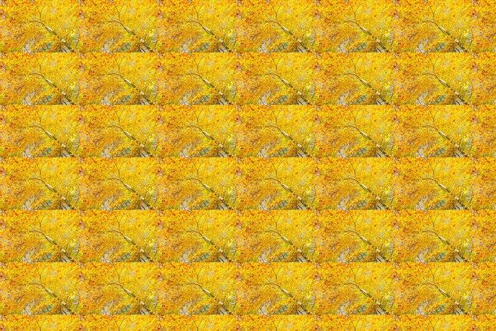 Vinylová Tapeta Žlutá třešeň v podzimním parku - Roční období