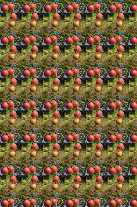 Vinylová Tapeta Větev s jablky. - Stromy
