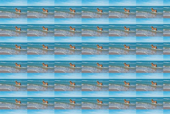 Vinylová Tapeta Kůň v moři - Voda