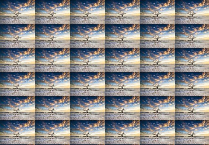 Vinylová Tapeta Charleston SC Ocean Oak Tree Edisto Island Beach Jižní Karolína - Prázdniny