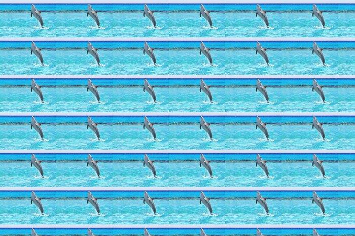 Vinylová Tapeta Dolphin skákání v Karibském moři v Mexiku - Témata