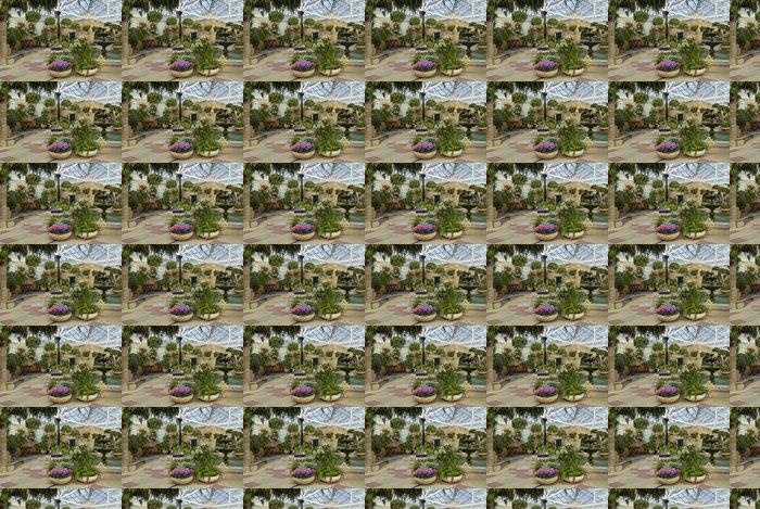 Vinylová Tapeta Cyclamen hrnce v zimní zahradě pokoji - Květiny