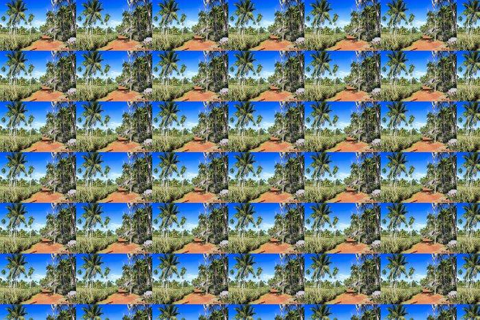 Vinylová Tapeta Green palmový les, krásná krajina Baracoa - Amerika