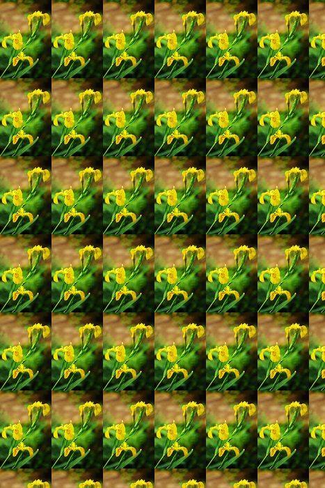 Vinylová Tapeta Vousatý kosatec žlutý - Květiny