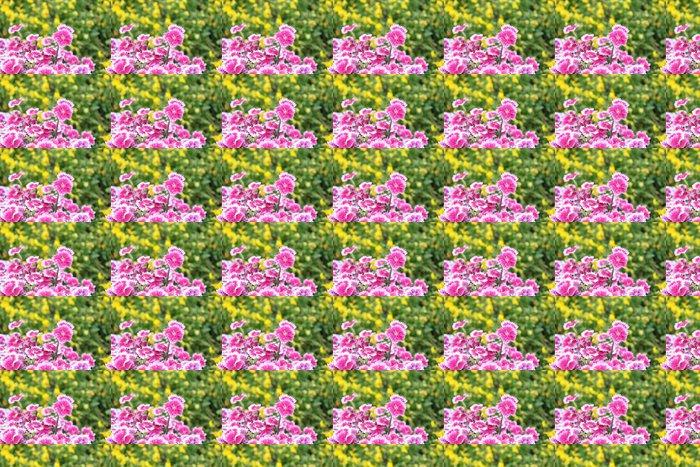 Vinylová Tapeta ピ ン ク の ナ デ シ コ と 黄色 の パ ン ジ ー - Roční období