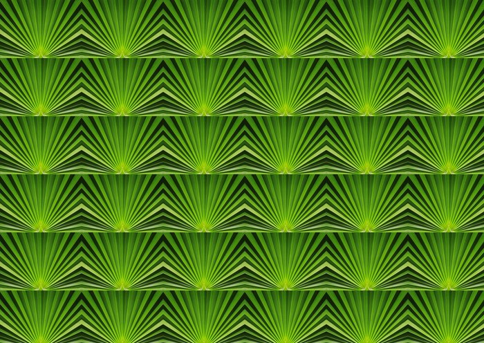 Vinylová Tapeta Palmový list zblízka - Rostliny