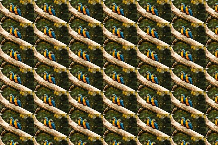 Vinylová Tapeta Dva papoušci sedí na kmeni - Ptáci