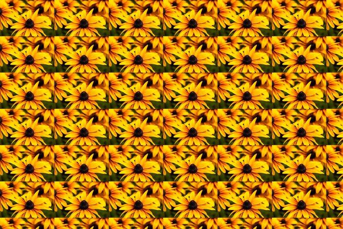 Vinylová Tapeta Zářivě žlutá Rudbeckia květiny v zahradě - Roční období