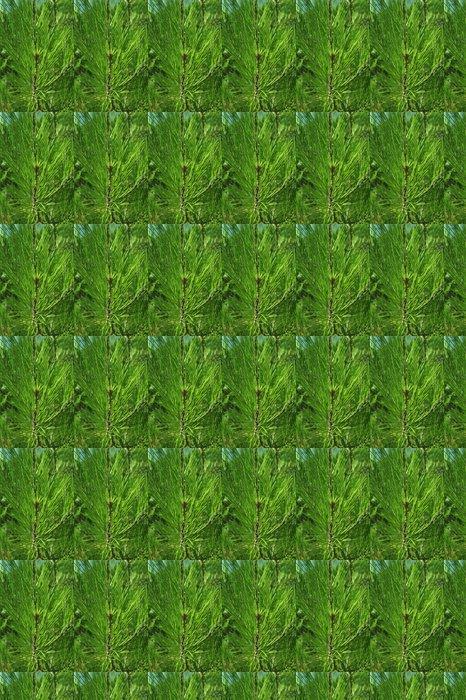 Vinylová Tapeta Zelené jehličí - Mezinárodní svátky