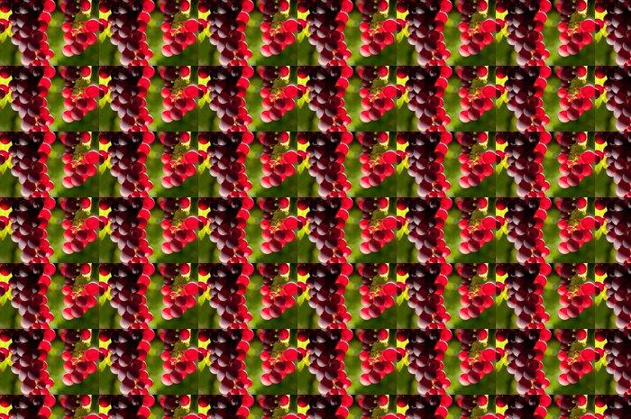 Vinylová Tapeta Vines 11181 - Ovoce