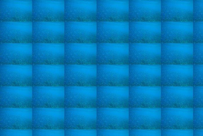 Vinylová Tapeta Korálové moře - Voda