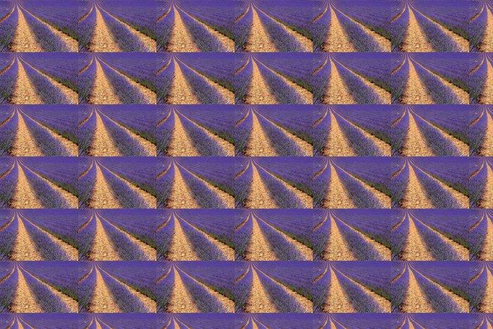 Vinylová Tapeta Levandulová pole pěstované v řádcích - Témata