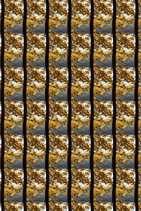 Vinylová Tapeta Dojem z listí a podzimních barev - Roční období