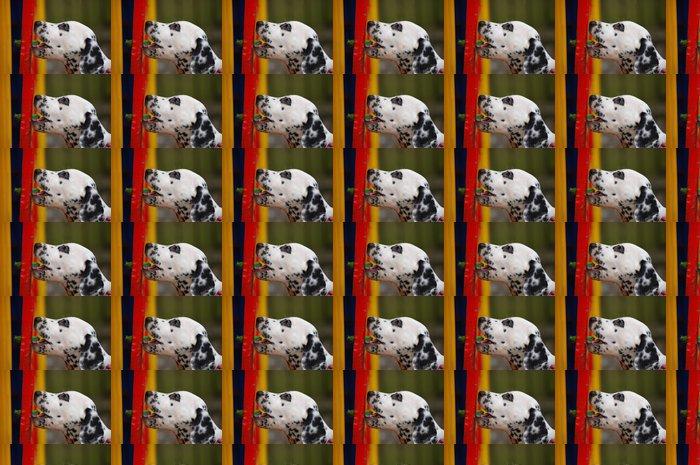 Vinylová Tapeta Dalmatin štěně - Savci