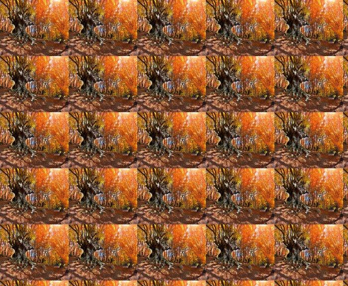 Vinylová Tapeta Barevné podzimní krajina v horském lese - Stromy
