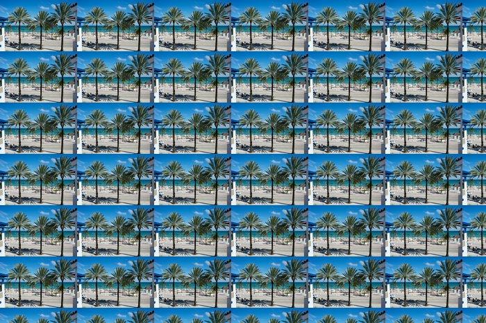 Vinylová Tapeta Florida - USA - Amerika