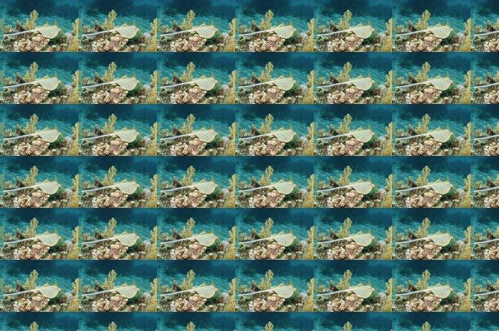 Vinylová Tapeta Modré stuhy ocas ray - Vodní a mořský život