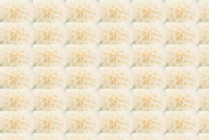 Vinylová Tapeta Pozadí z bílého jemného načechraný pampelišky - Témata