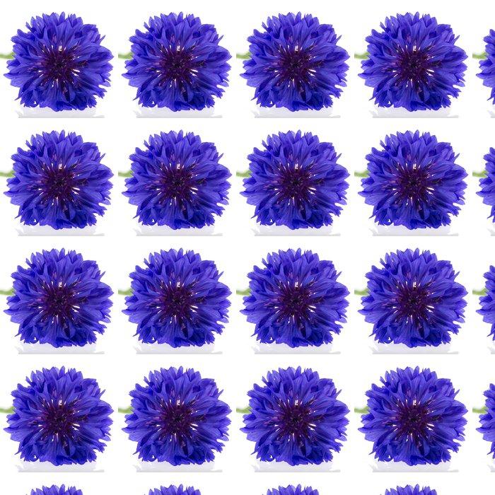 Vinylová Tapeta Modrá chrpa - Květiny