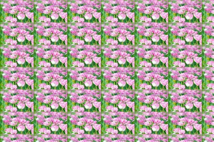 Vinylová Tapeta Zahrada s květy tulipánů v létě - Květiny