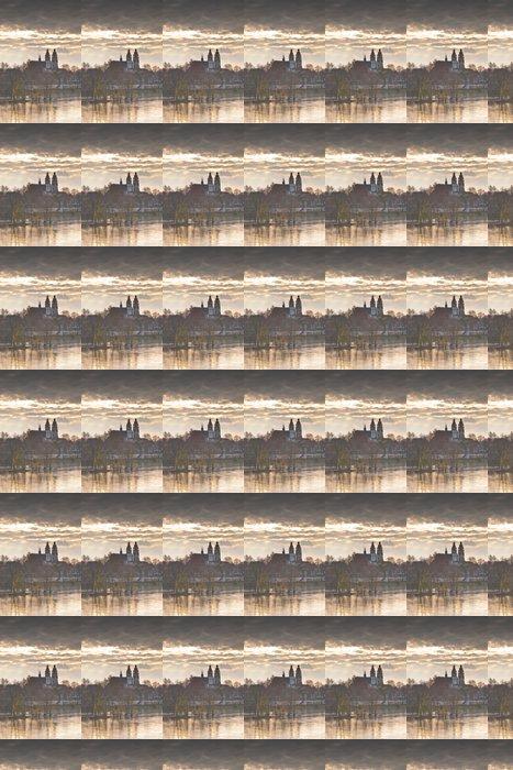 Vinylová Tapeta Saint Gatien katedrála v Tours. - Veřejné budovy