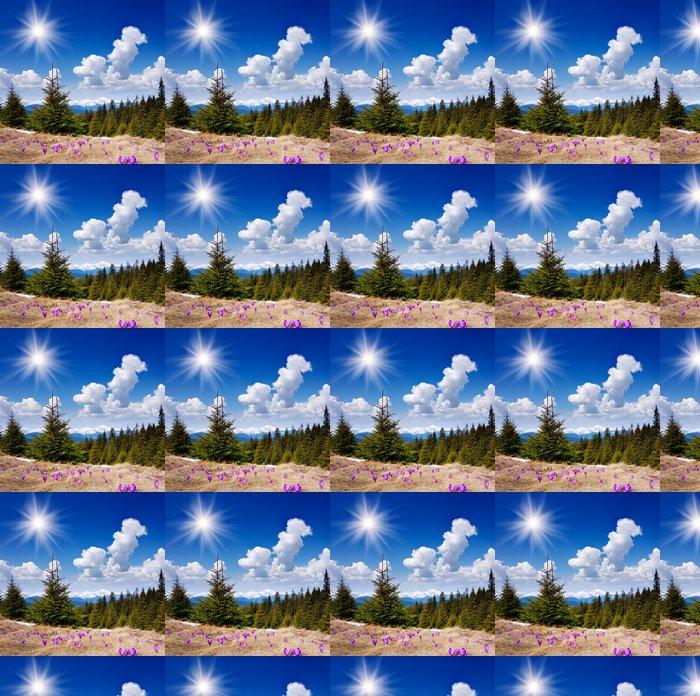 Vinylová Tapeta Krásné jarní květiny v horách - Roční období