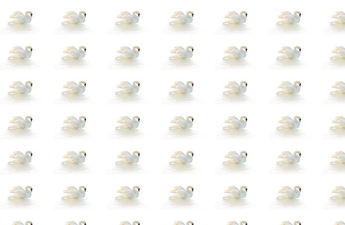 Vinylová Tapeta Bílá labuť - Ptáci
