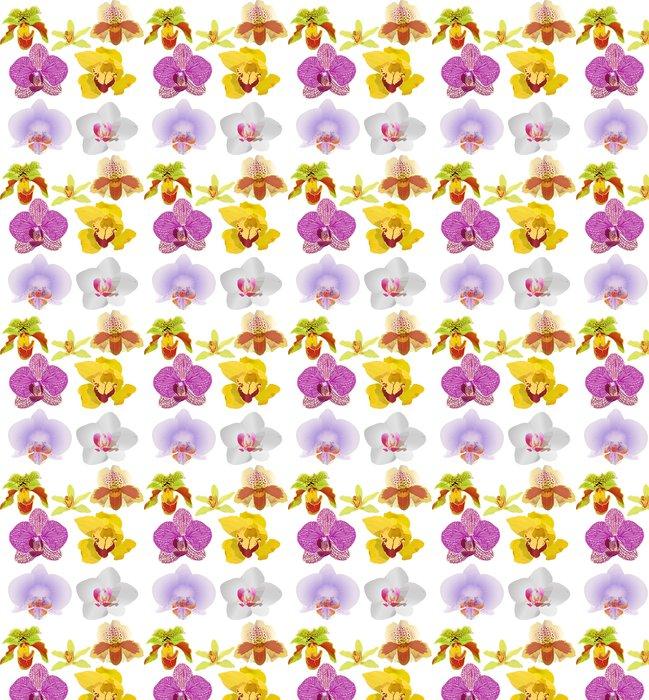 Vinylová Tapeta Sedm světlé květy orchidejí ilustrační - Květiny
