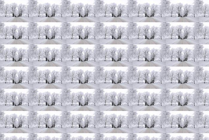 Vinylová Tapeta Stromy v jinovatka mráz - Roční období