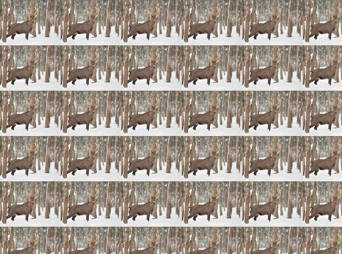 Vinylová Tapeta Jelen - Zvířata