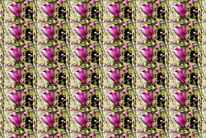 Vinylová Tapeta Magnolie kvetoucí - Témata