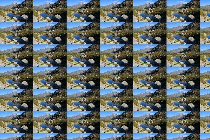 Vinylová Tapeta Dolina za Mnichem ve Vysokých Tatrách - Evropa