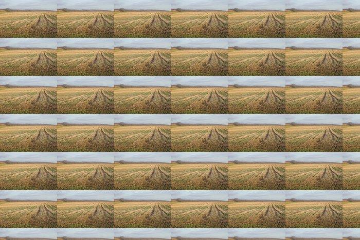 Vinylová Tapeta Sillon - Zemědělství