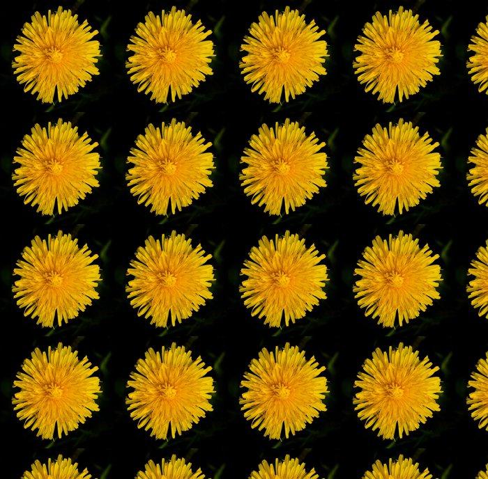 Vinylová Tapeta Löwenzahn110 - Květiny
