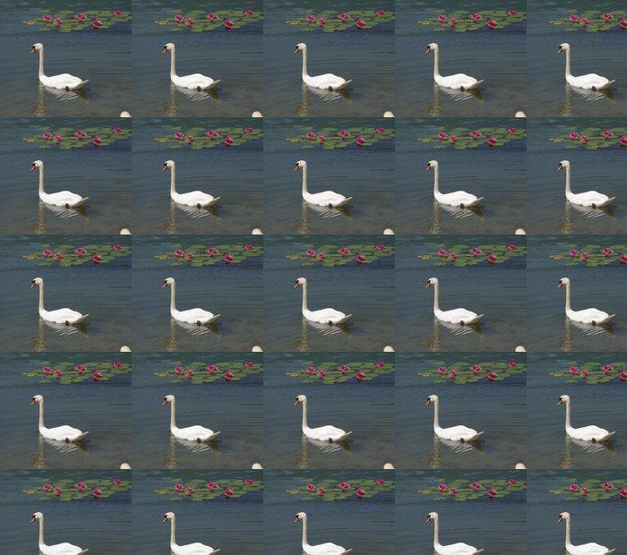 Vinylová Tapeta Cygne - Ptáci