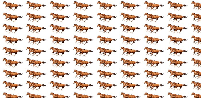 Vinylová Tapeta Dva šťovík koně cval - Nálepka na stěny