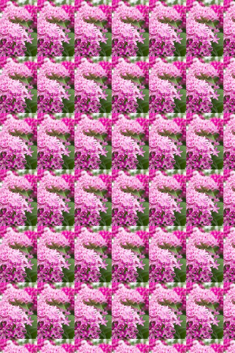 Vinylová Tapeta ピ ン ク の ペ ン タ ス の 花 - Květiny
