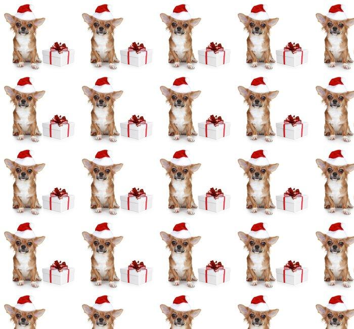 Vinylová Tapeta Chihuahua v vánoční čepice a s dárkem - Mezinárodní svátky