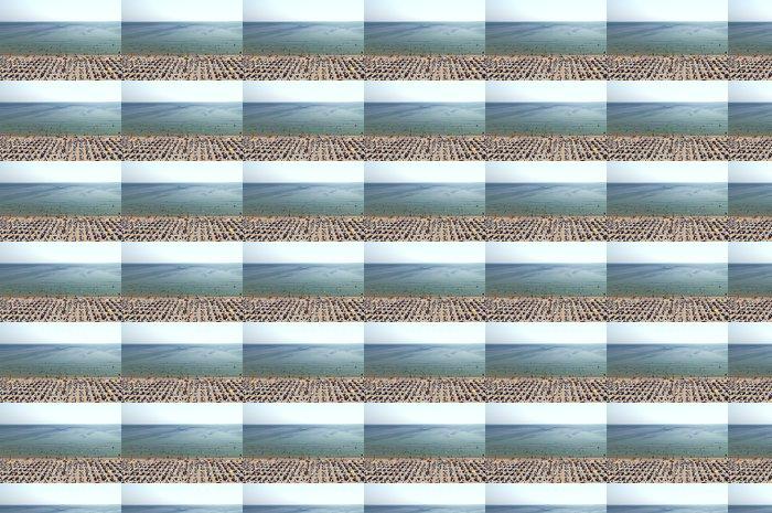 Vinylová Tapeta Horký den Albena beach nadhledu Bulharsko - Ostatní Ostatní