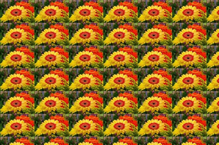 Vinylová Tapeta Gerbera 23 - Květiny