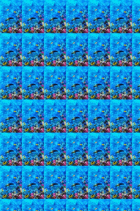 Vinylová Tapeta Coral a ryby v Rudém moři. Egypt, Afrika. - Témata