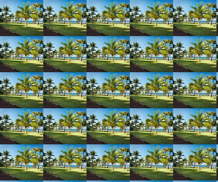 Vinylová Tapeta Pláž Grande Anse - Réunion - Prázdniny