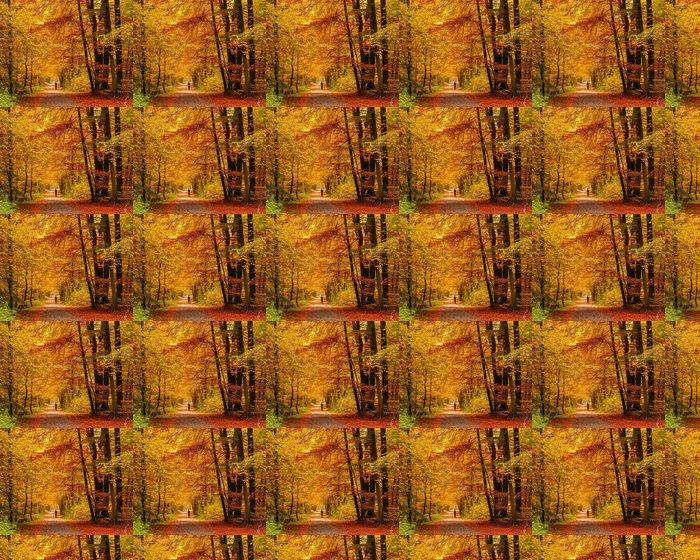 Vinylová Tapeta Podzimní les - Témata