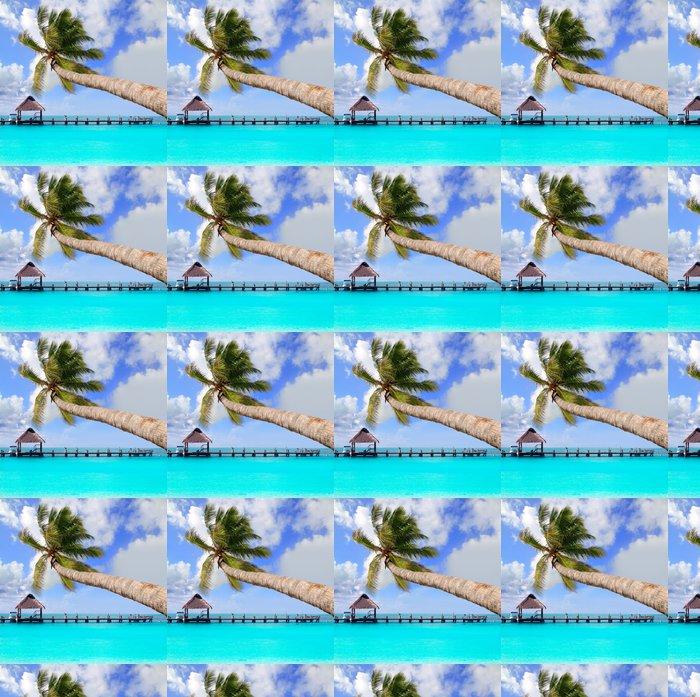 Vinylová Tapeta Palm tree in tropical dokonalé pláži - Amerika